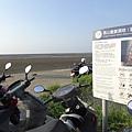 海山漁港旁濕地.JPG