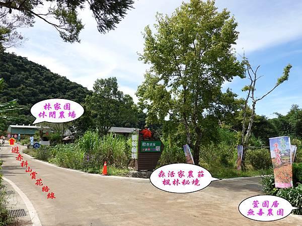 往森活家山路路口.jpg