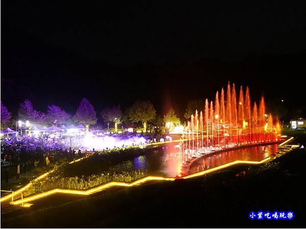 DSC00012慈湖3D水舞秀2.jpg