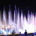 DSC09986慈湖3D水舞秀54.jpg