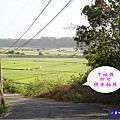 2020-10月外埔忘憂谷 (18).jpg