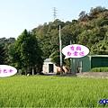 2020-10月外埔忘憂谷 (27).jpg