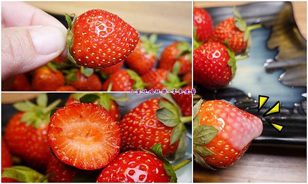 草莓吃到飽-赤富士草莓季 (1).jpg