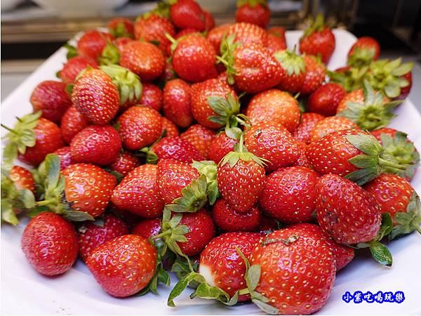 草莓吃到飽-赤富士草莓季 (3).jpg