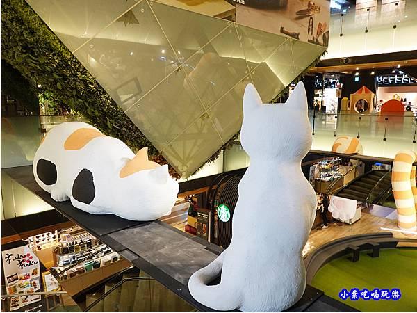 11park遇見貓  (1).jpg