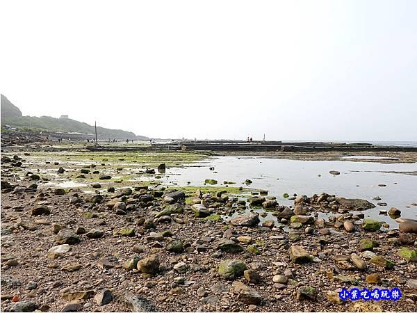 左邊潮間帶-馬崗漁港 (7).jpg