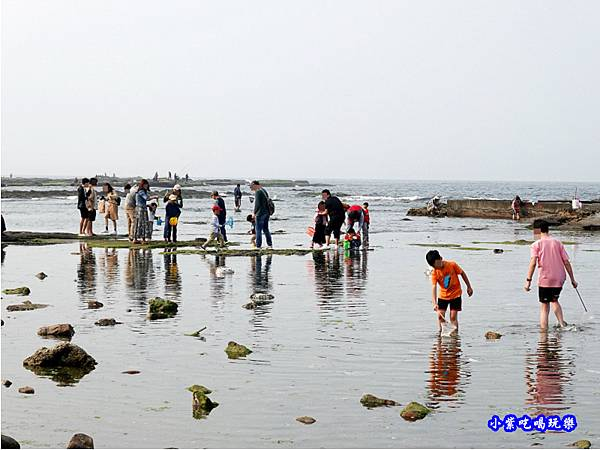 左邊潮間帶-馬崗漁港 (10).jpg