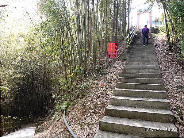 羅浮遊客中心後方往義興吊橋步道 (1).jpg