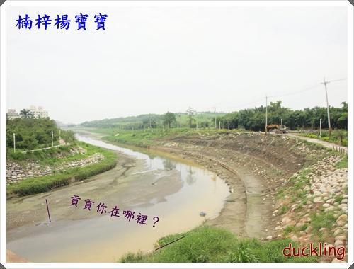 楠梓楊寶寶P6053985-003.JPG