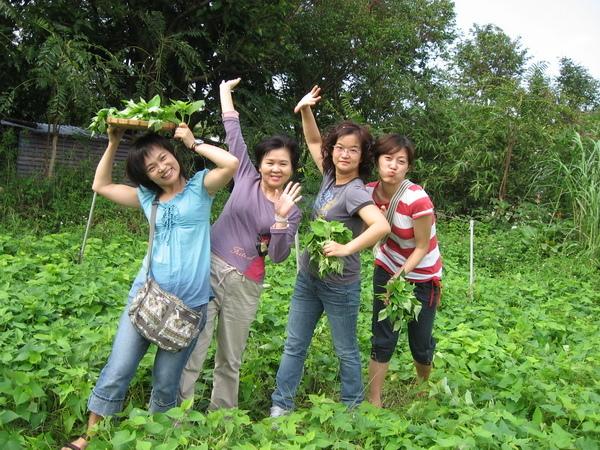 20081012大屯溪農場 035.JPG