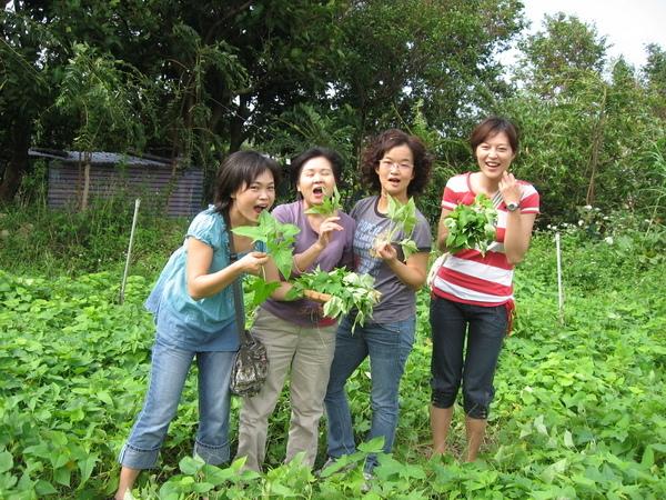 20081012大屯溪農場 043.JPG