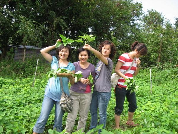 20081012大屯溪農場 046.JPG