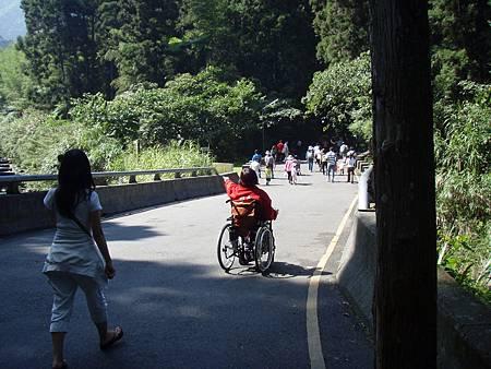 這是溪頭森林遊樂區內的道路,一般遊客可以走步道前往各個景點.JPG