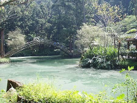 優雅的大學池中有孟宗竹作成的拱橋。.JPG