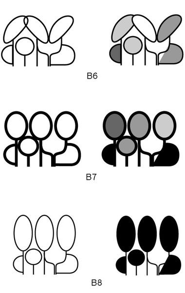 B6-7-8_1.jpg