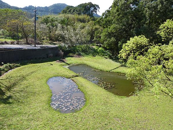 P1060516用餐點外的風景,小湖很像兩個腳Y.JPG