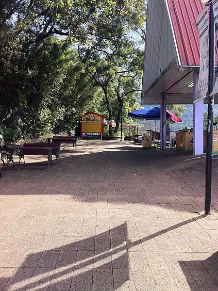 IMG_0294花海上方的飲食區,有賣百花蜜、蜜蜂展示區、豆腐專賣店、冰淇淋小吃等,也有觀景台,很舒適.JPG