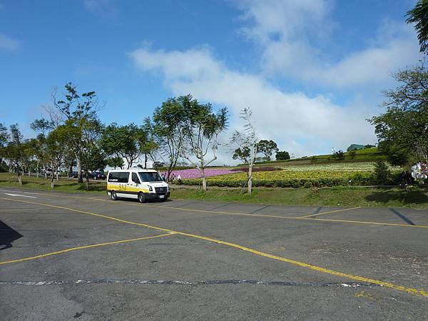 P1060689第一、第二停車場的廁所,對面仍是一片花海的景色,可以選擇最後上個廁所或是拍幾張照片再上車喔!.JPG