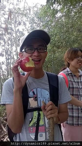 一顆吃了就飽了的大蘋果,花了半小時邊爬邊吃才嗑掉