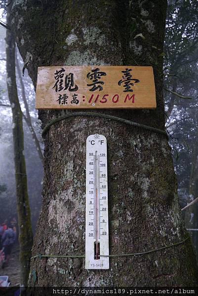 觀雲台,氣溫15度,其實整座山都有樹蔭遮避,很涼爽
