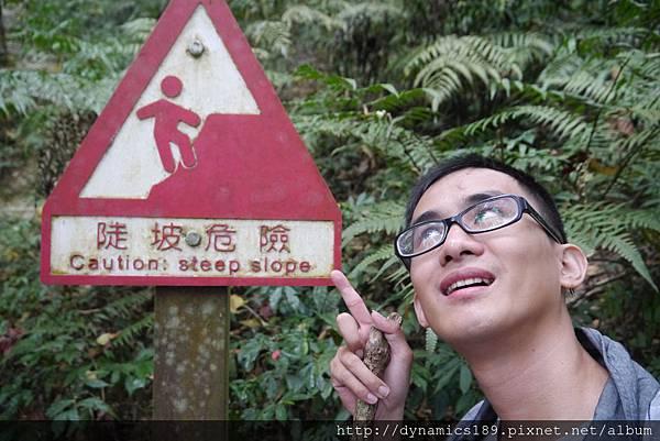 超過兩公里的陡坡,下來後覺得膝蓋要保養了QQ