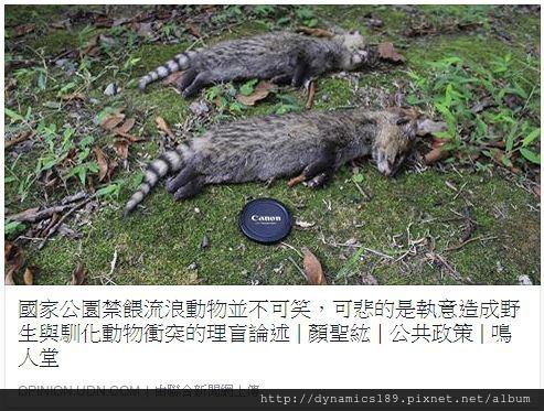 國家公園禁止餵食,野生動物在天然環境中的權益永遠高於馴化動物。