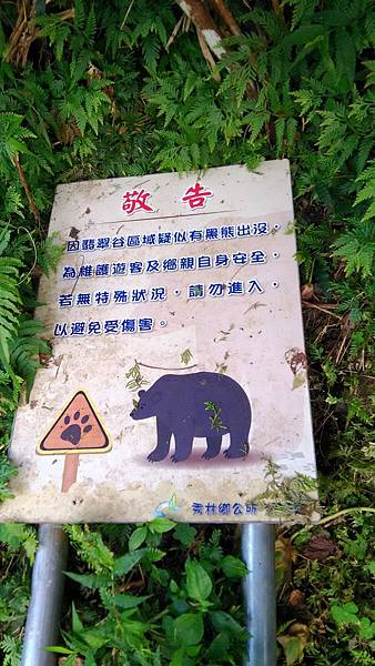 P_20161214_083504_有熊出沒注意_看來是走對路了+.jpg