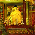 B 祈願法會 莊嚴的會場  ...5  佐欽寺迎請來台 釋迦牟尼佛像.JPG