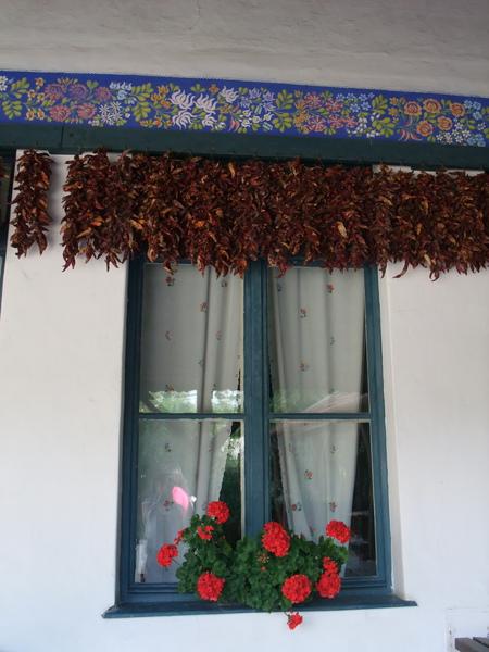 2009年暑假義大利斯洛維尼亞匈牙利三國之旅part2 1191-1.jpg