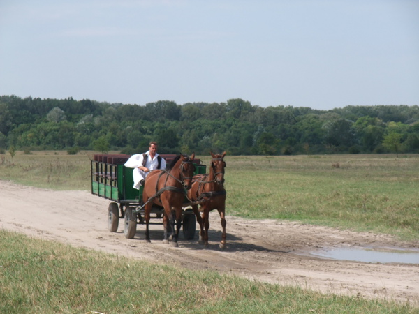 2009年暑假義大利斯洛維尼亞匈牙利三國之旅part2 1532.jpg