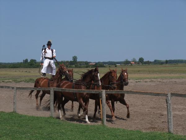 2009年暑假義大利斯洛維尼亞匈牙利三國之旅part2 1665.jpg