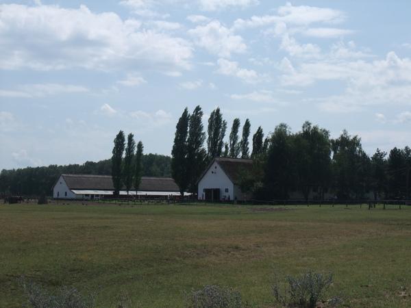 2009年暑假義大利斯洛維尼亞匈牙利三國之旅part2 1703.jpg
