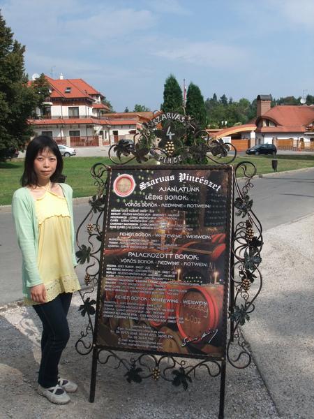 2009年暑假義大利斯洛維尼亞匈牙利三國之旅part3 154-1.jpg