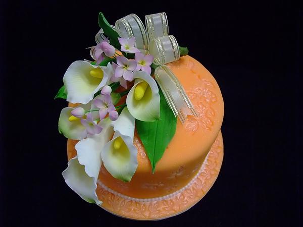 擠花蛋糕裝飾2010.08.24 027.jpg