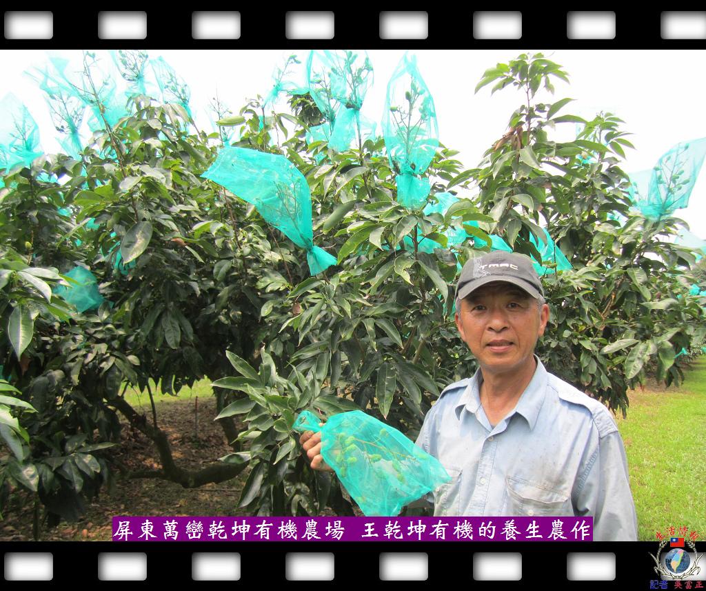 20140429-乾坤有機農場充滿新鮮且有機的養生農作1