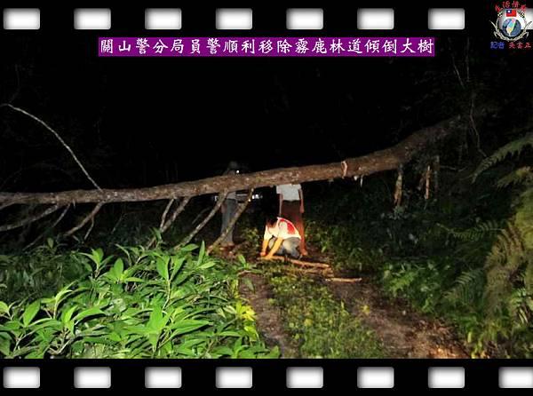 20140610-台東縣關山警分局員警順利移除霧鹿林道傾倒大樹2