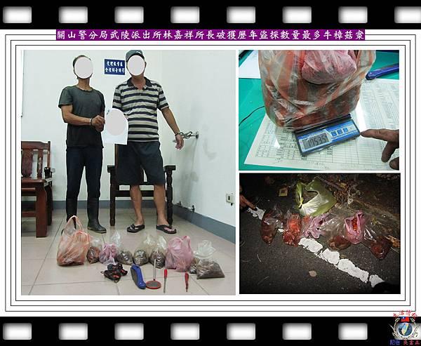 20140708-關山警分局武陵派出所破獲歷年盜採數量最多牛樟菇案