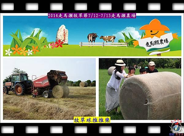 20140710-2014走馬瀨牧草節A02