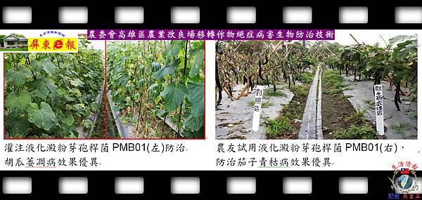 20140828-農委會高雄區農業改良場移轉作物絕症病害生物防治技術02