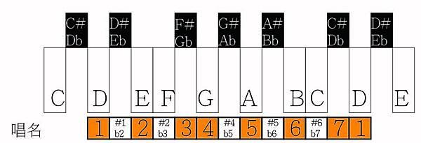 鍵盤D-01.jpg