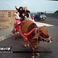 旺福-體驗坐牛車