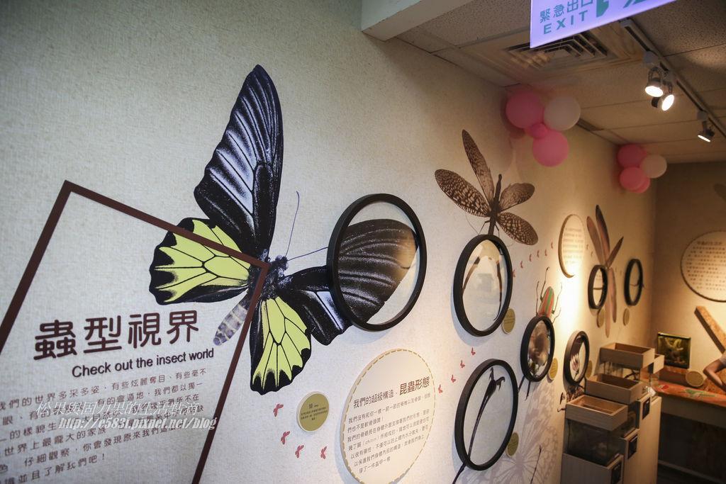 台灣昆蟲館(9月)-3.JPG