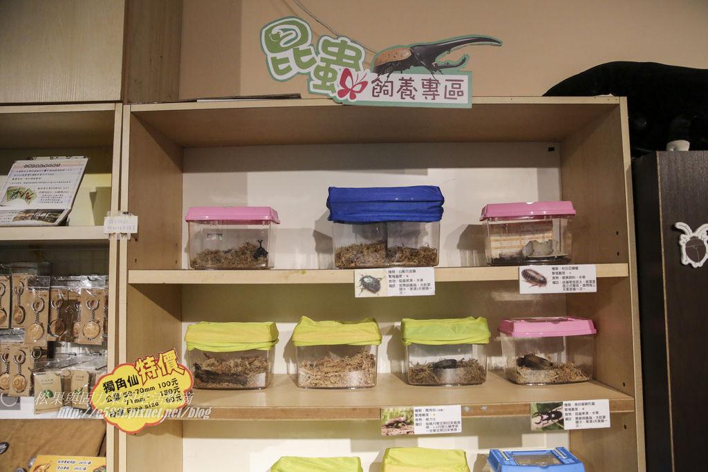 台灣昆蟲館(9月)-25.JPG