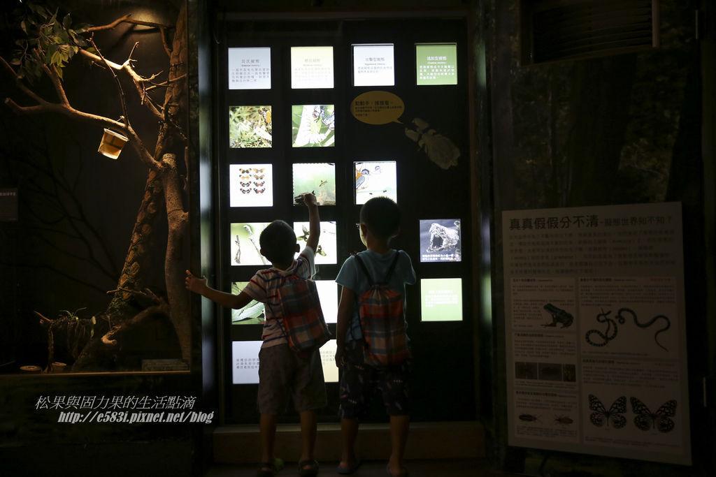 台灣昆蟲館(9月)-61.JPG