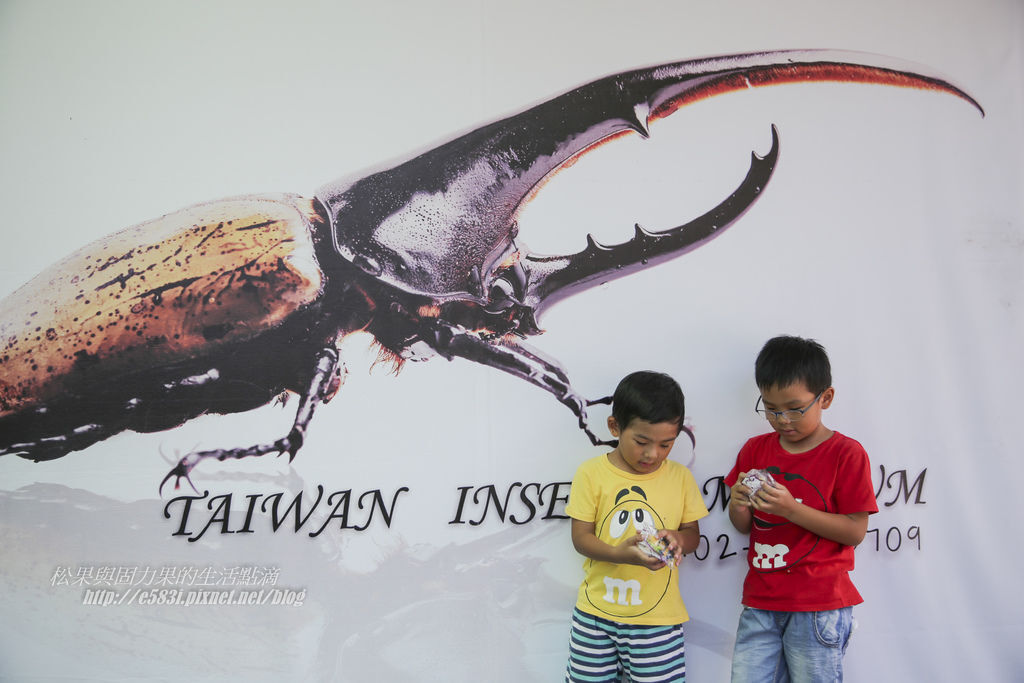 台灣昆蟲館(7月)-128.JPG