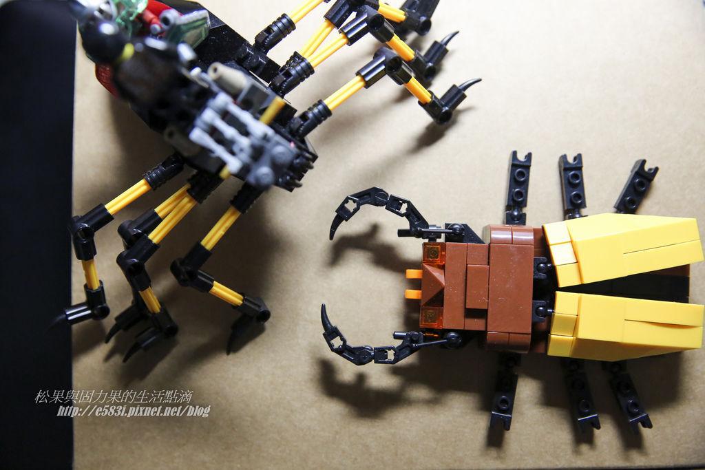 昆蟲積木-1.JPG