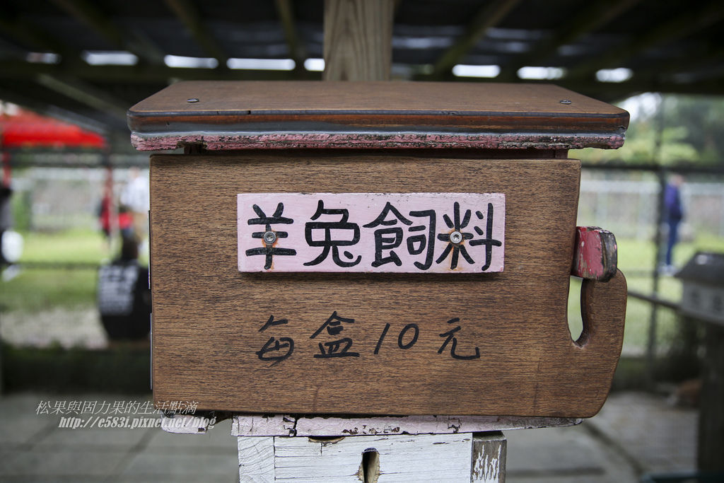 芳樺Day2-240.JPG