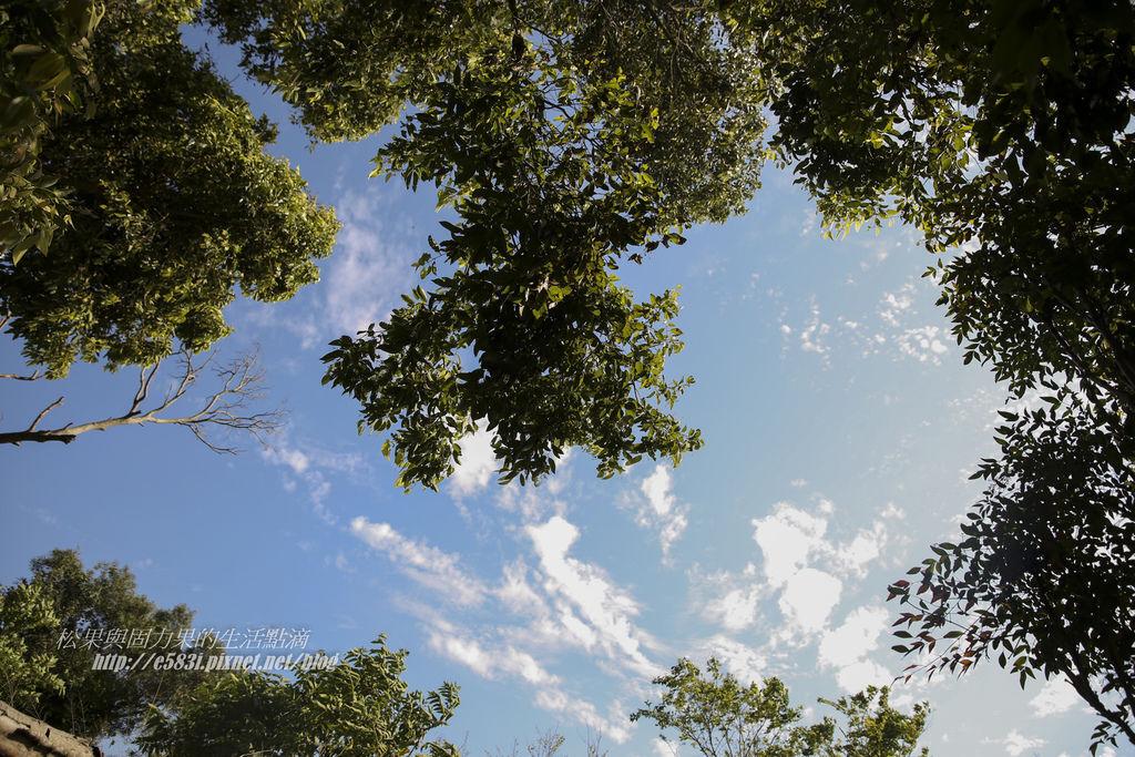 藍天綠地DAY2-161.JPG