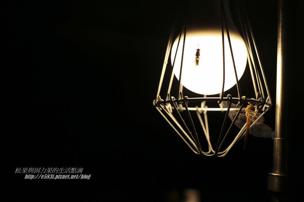 老官道-Day1-7.JPG