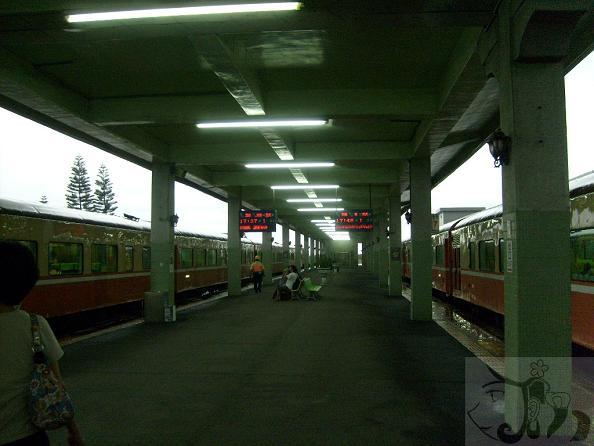 從初鹿農場離開道火車站直到坐上火車 (25).jpg